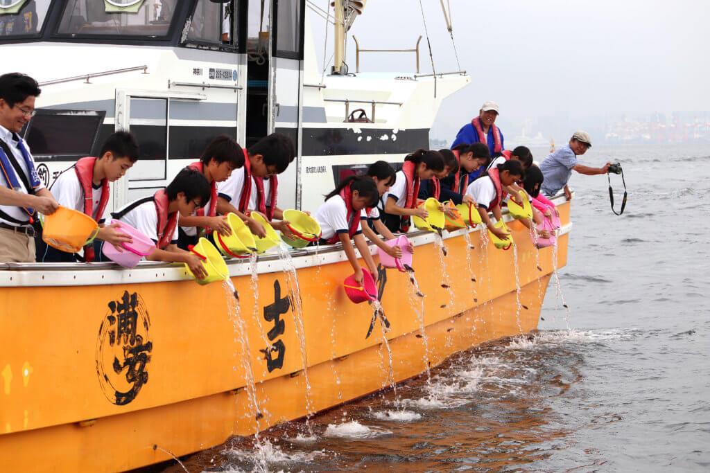中学生による東京湾で行われたカサゴ稚魚放流の様子