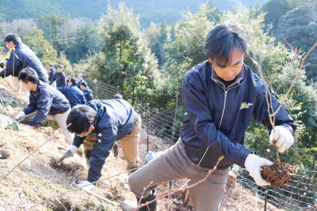 植樹事業の様子1