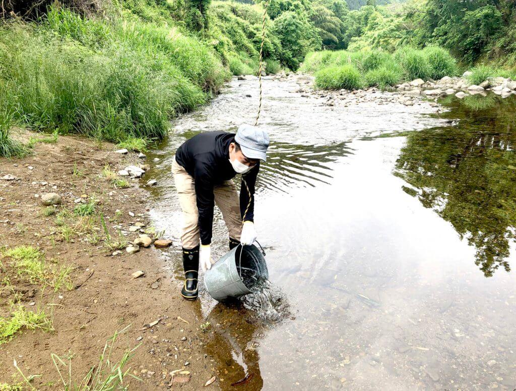 岐阜県長良川郡上にてアマゴの稚魚放流活動を行なった