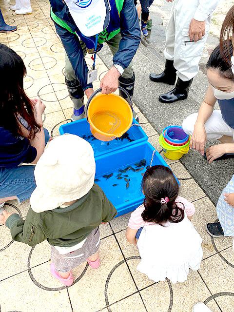 近隣の親子もマコガレイ稚魚放流を体験した