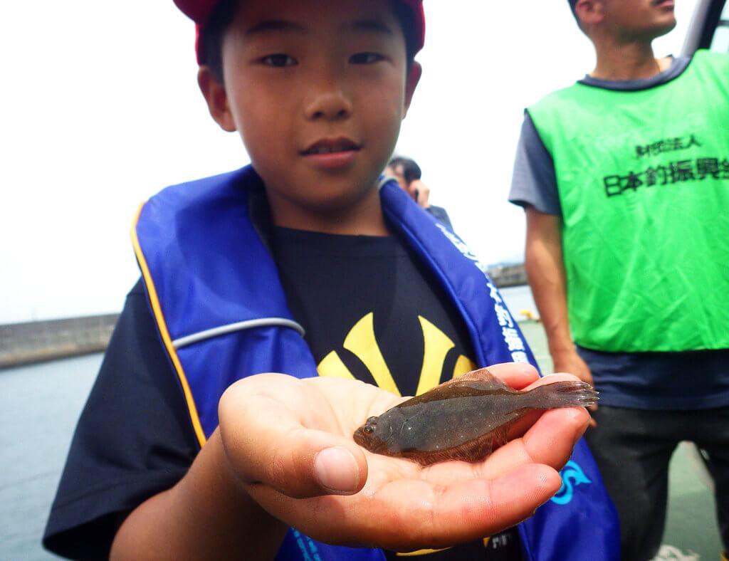田ノ浦漁港で行われたヒラメの稚魚放流の様子