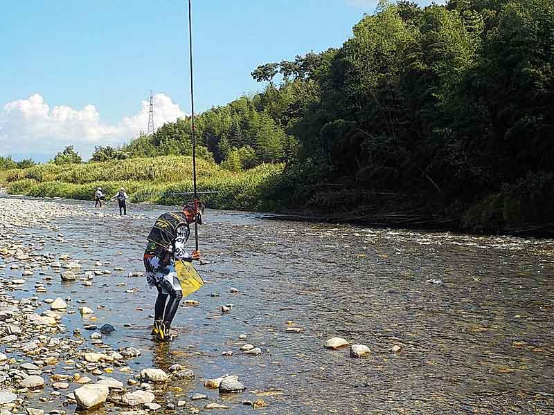 安曇川でのアユ釣りの様子