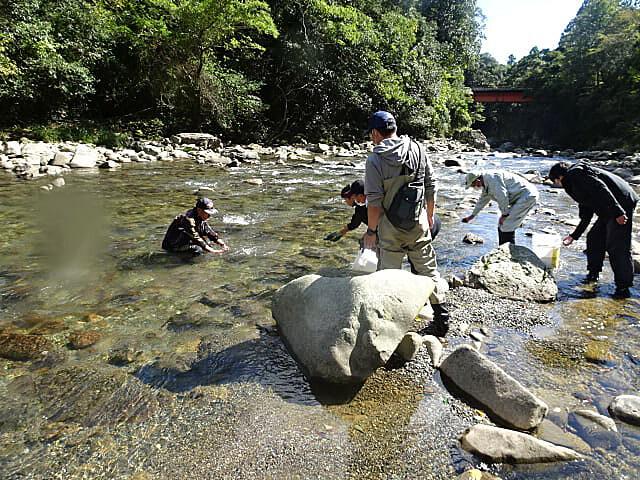 古座川の景色