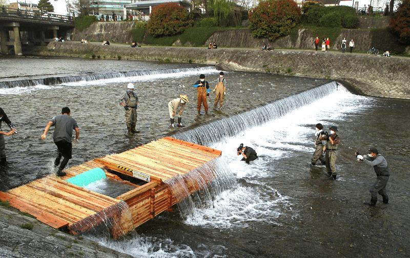 京の川の恵みを活かす会