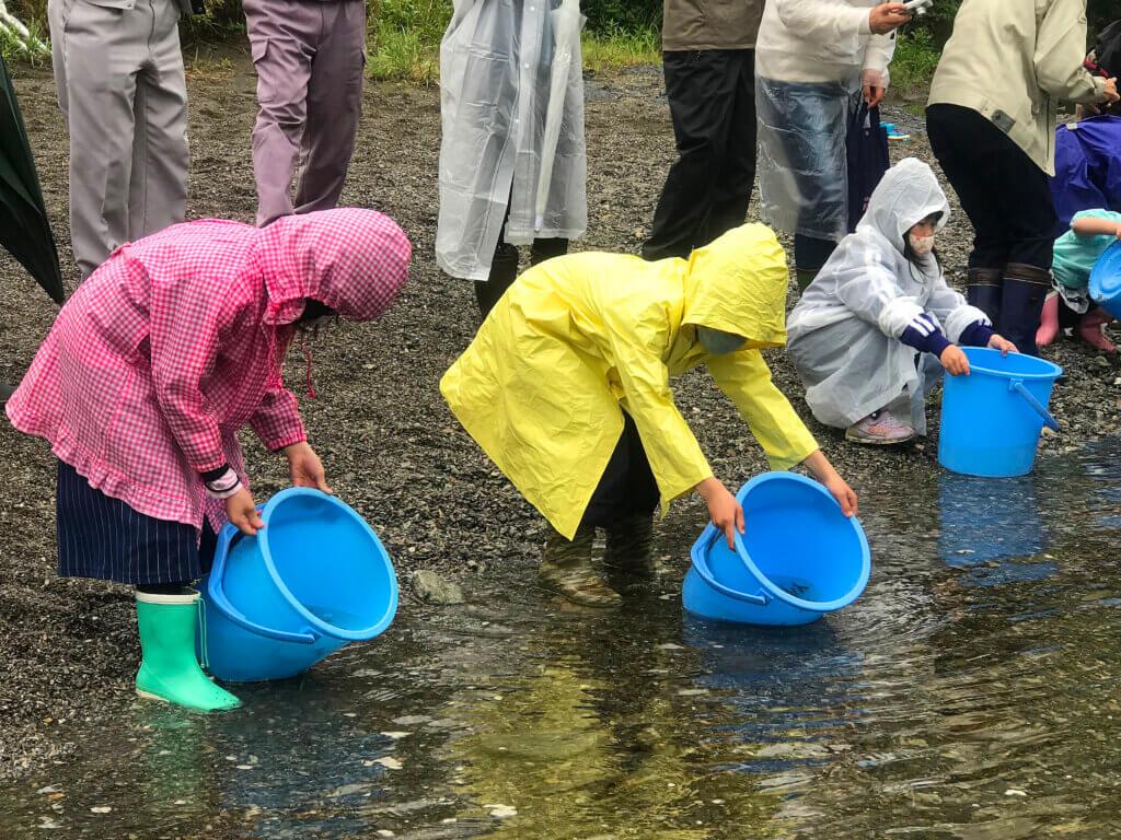 櫛田川での稚魚放流の様子