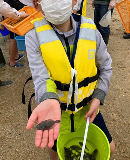田ノ浦漁港でのヒラメ稚魚放流の様子