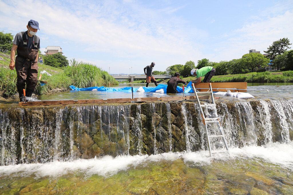 京の川の恵みを活かす会の仮設魚道の設置風景